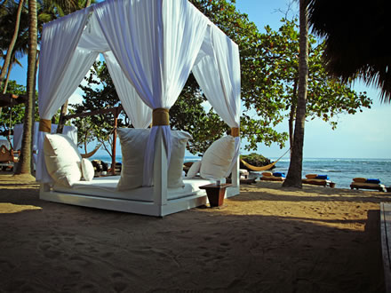 The Natural Vegetation Landscape And Palm Trees Is A Beautiful Nature Escape This Beach Boasts Large Canopy Beds